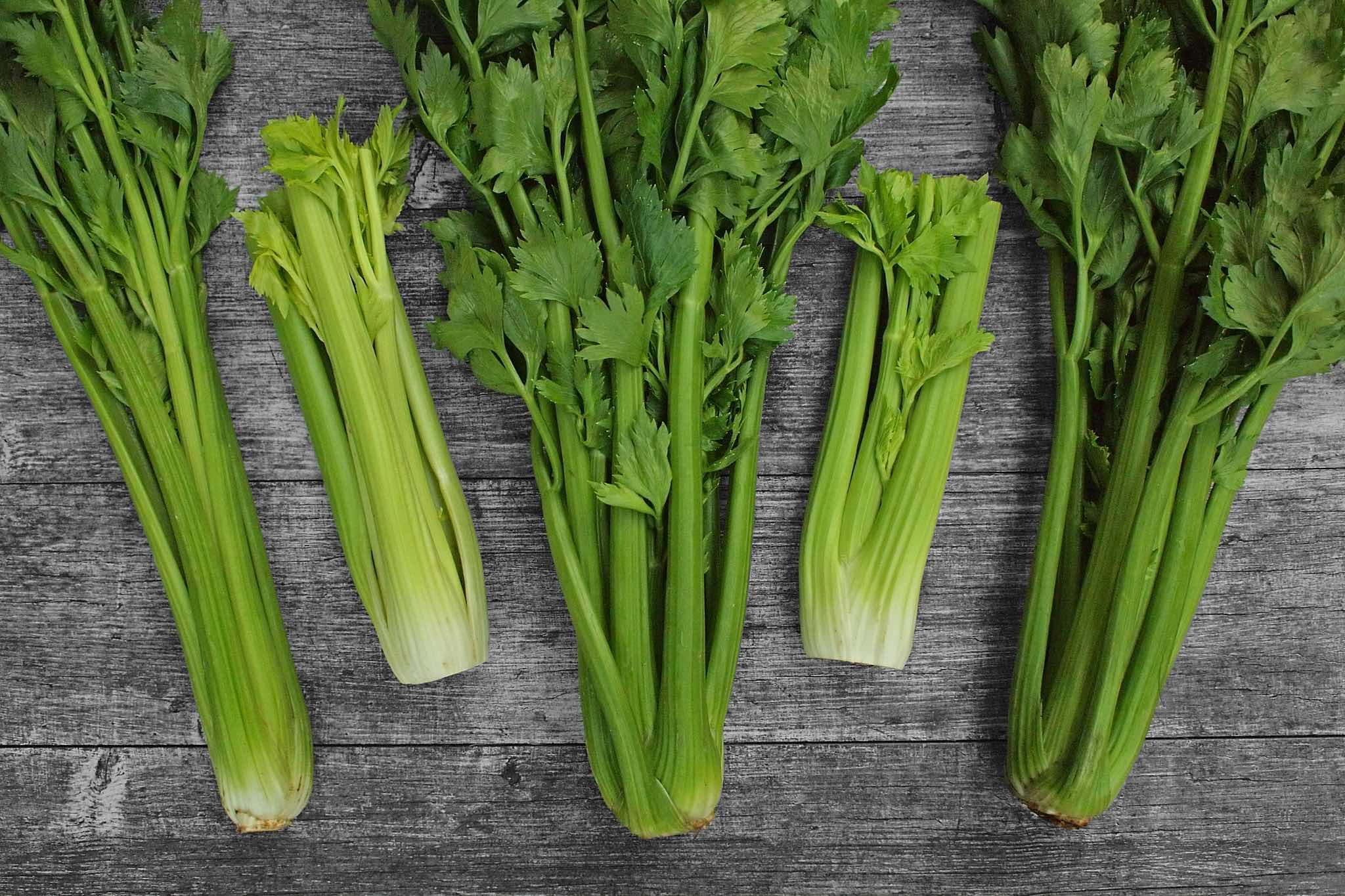 Výsledek obrázku pro řapíkatý celer